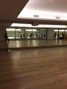 I joined Equinox and during non peak hours it's so nice! I have the whole group fitness classroom to myself. I blast Taylor Swift and work on lunges, squats, and abs.